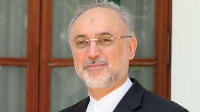 Iranian Foreign Minister Ali Akbar Salehi (Photo Credit: PressTV)